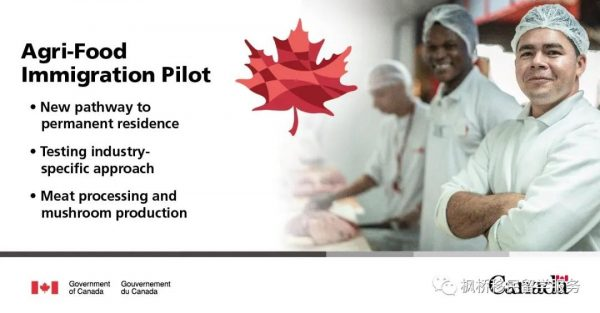 【重磅】加拿大农业和食品工人移民试点项目正式开始接受申请;BC第二个小社区开放申请