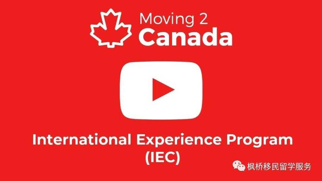 【移民】加拿大工签必须有LMIA或者省提名?No,IEC工签了解一下啊!
